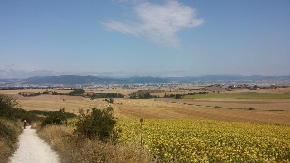 Appena superata Pamplona ritroviamo le colline, tutto molto bello...