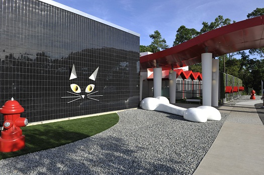 photos best friends pet care luxury pet resort at walt disney worldbest friends pet care luxury pet resort, now open at walt disney world resort, offers plush accommodations and vip (very important pet) suites for cats,