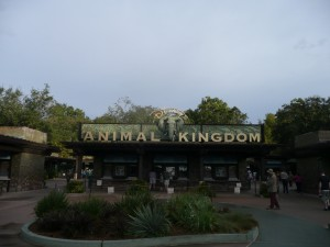 What is Rope Drop and Why do I want to see it? 1