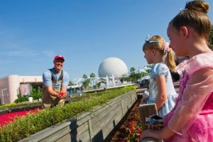 What is More Fun than EPCOT and a Cranberry Bog? 1