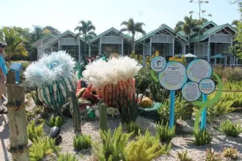 SeaWorld Anemones