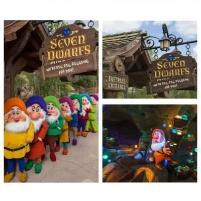 Seven Dwarf Mine Train Collage