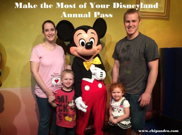 DL annual pass