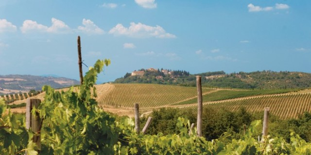 adventures-by-disney-europe-italy-hero-12-vineyards-of-tuscany
