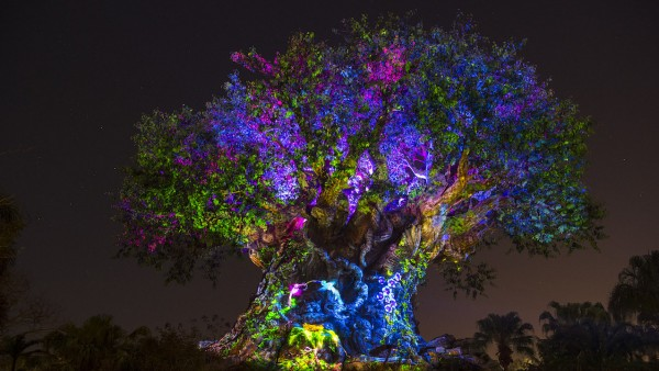 Disney World Adds More Hours to Enjoy the Magic This March 1