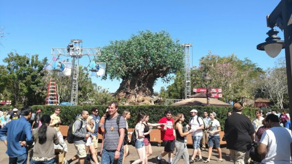 Preparations Begin for 'The View' Taping at Animal Kingdom 2