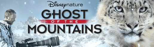 "Disneynature's ""Ghost Of The Mountains"" Now Available 1"