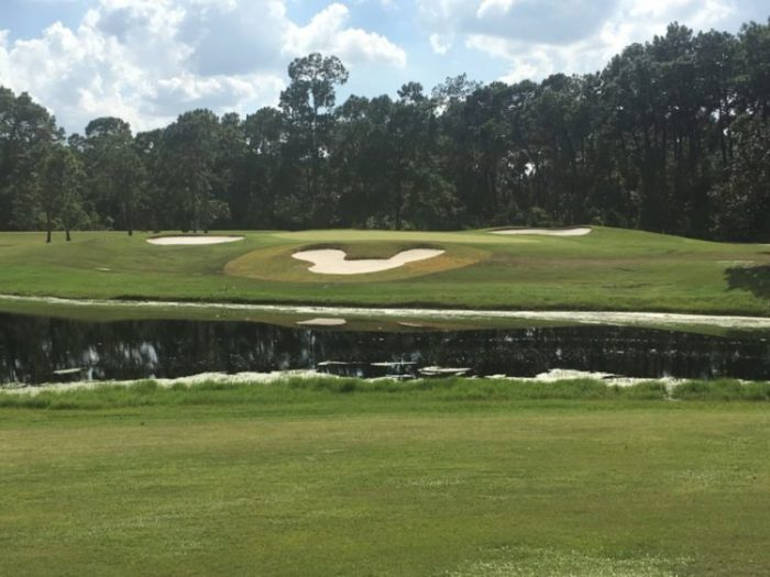 Mickey Mouse Bunkers