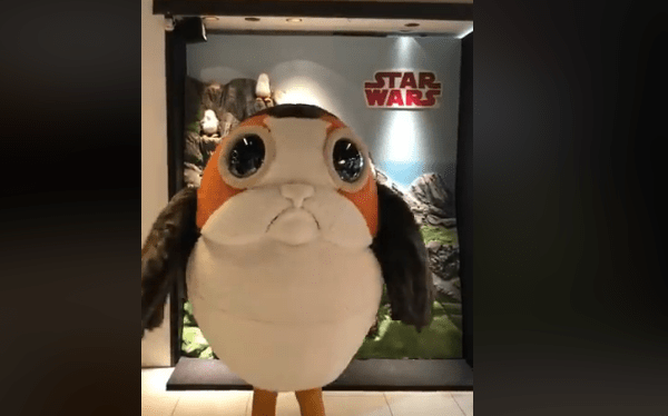 Is disney testing a porg meet greet in japan this video from shibuya tokyo japan is blowing up on the net it shows an extremely cute porg with a star wars banner behind them m4hsunfo