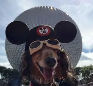 Disney Donates $2 Million to Make-A-Wish Thanks to #ShareYourEars Campaign 3