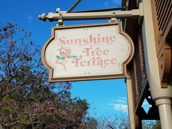 The Citrus Swirl is Out and the Orange Swirl is In at Sunshine Tree Terrace 2