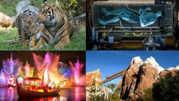 Animal Kingdom's 20th Anniversary Celebration to be Streamed on #DisneyParksLIVE 1