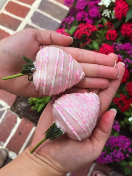 Millennial Pink Chocolate Covered Strawberries