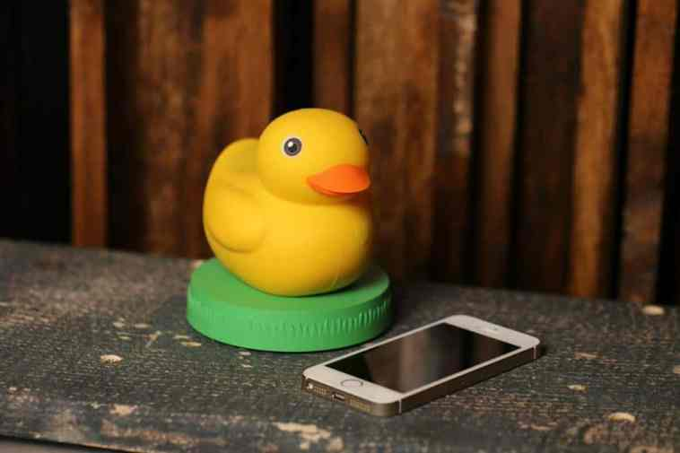 Edwin is One Smart Rubber Duckie – Chip Chick