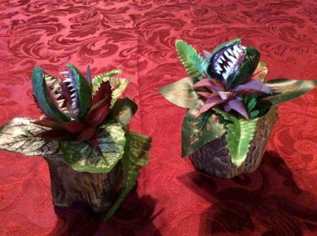 Carnivorous alien plants by Suzanne Forbes Dec 2019
