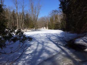 Looking NW at the frozen Chippewa River along the Sylvan Solace border