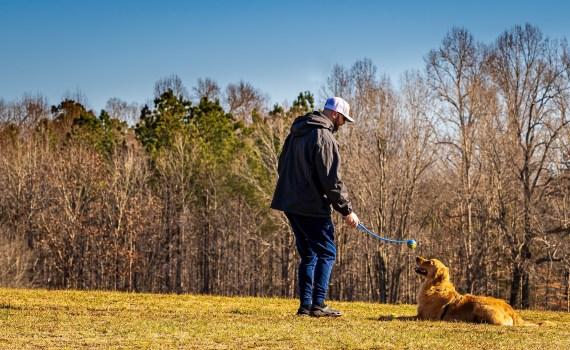 Sit-Ups sind die Idealen Spiel- ound Trainingseinheiten mit Ihrem Hund