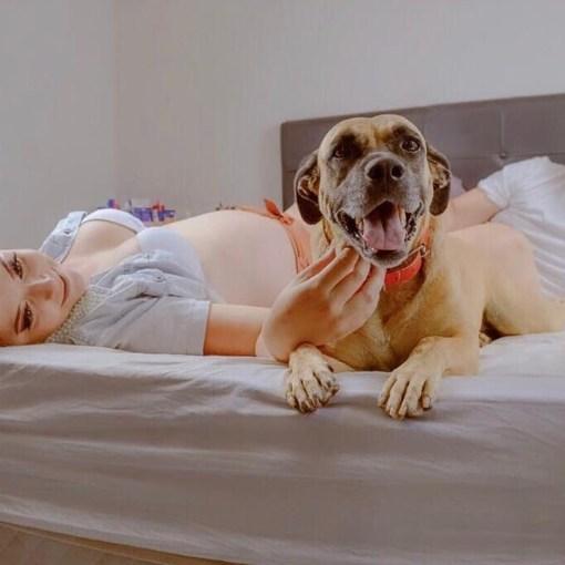Stress abbauem mit Hund, dass funktioniert wirklich.