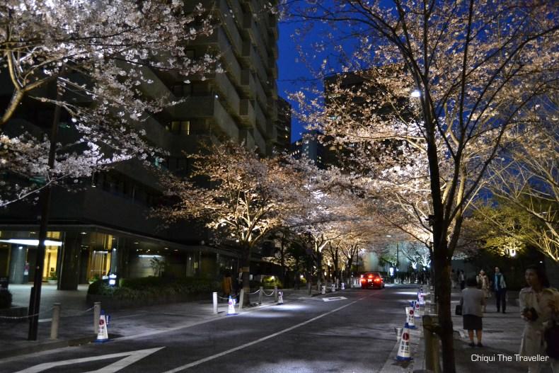 Roppongi Itchome sakura de noche Tokio 2