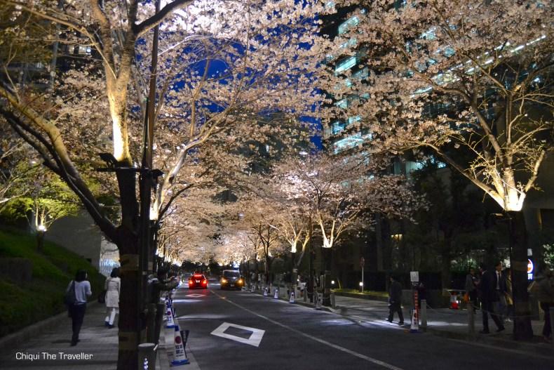 Roppongi Itchome Sakura de noche Tokio