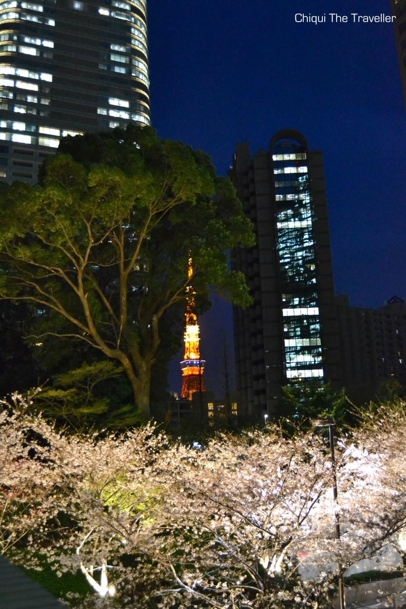 Roppongi Itchome sakura Tokio Tokyo tower
