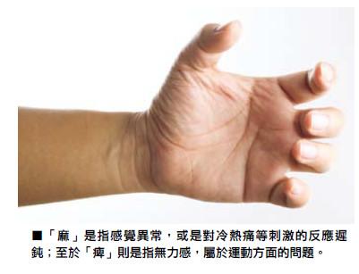 細談手腳麻痺背後的原因 - 香港脊醫及腦神經外科醫療中心