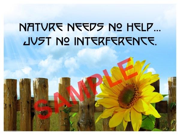 Chiropractic Poster Nature