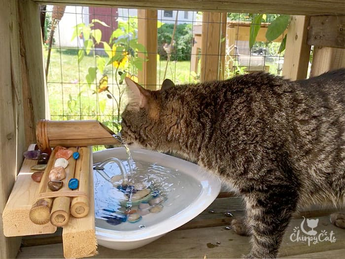 A water fountain is an essential accessory to a catio