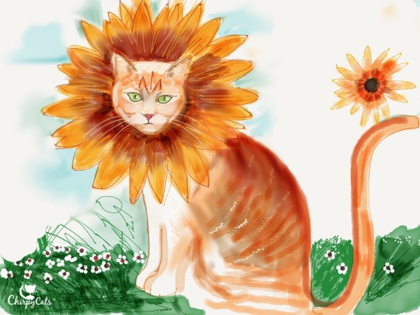 Jimmy the cat, cat wearing sunflower hat