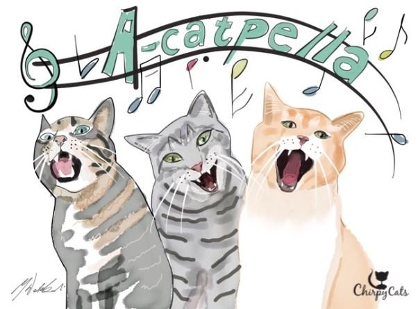 Cats sing Acatpella for morning breakfast
