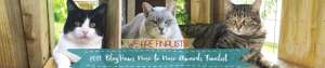 2017 BlogPaws finalists