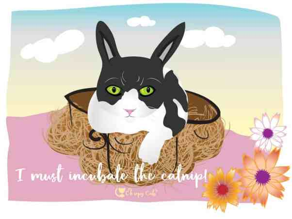 cat cartoon bunny vector drawing