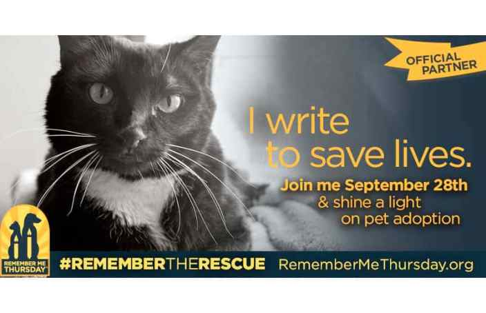 Remember me Thursday pet adoption