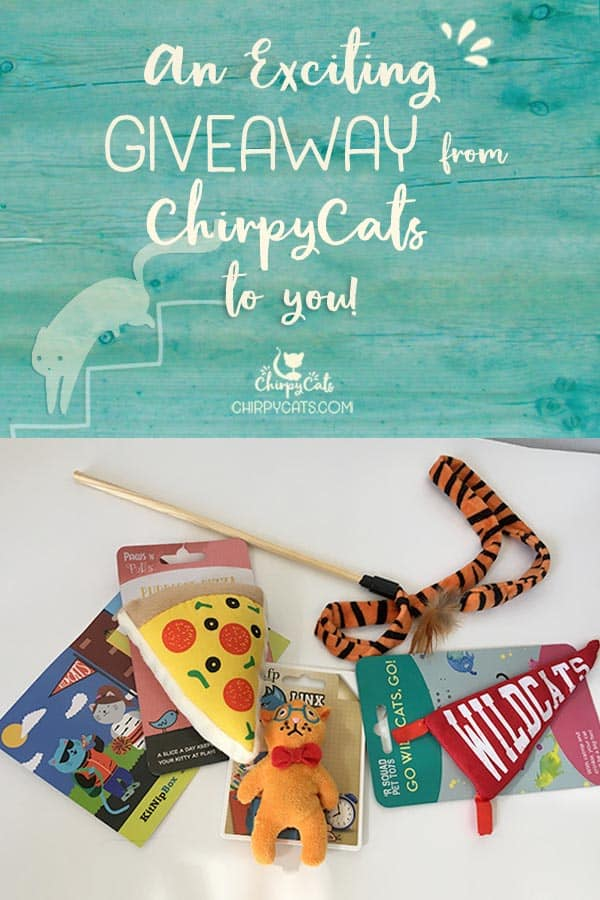The Chirpies are giving away a few toys from their September KitNipBox