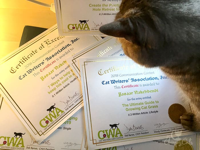 Cat Writer's Association Certificate of Excellence Chirpy Cats