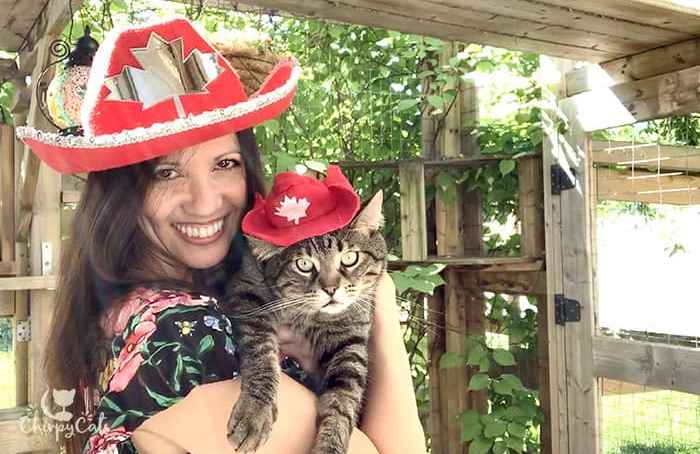 cat wearing Canada day hat