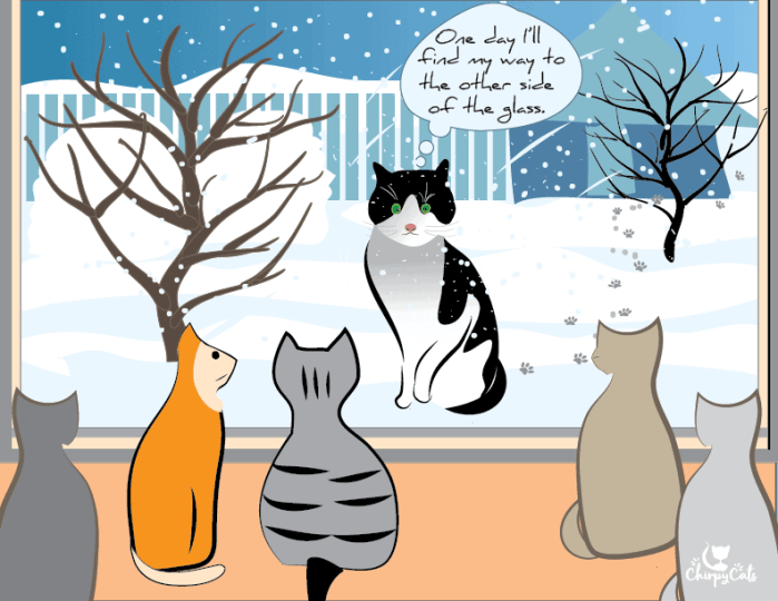 cartoon of homeless cat in the snow looking at cats inside their house