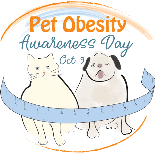 Pet obesity awareness day drawing