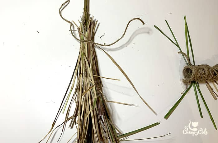 making a witches broom with cat grass and catnip stems
