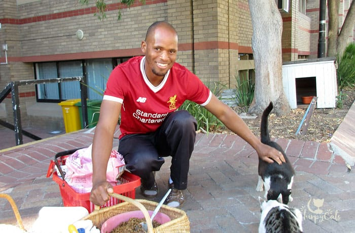 smiling man feeding feral cats on south african university campus
