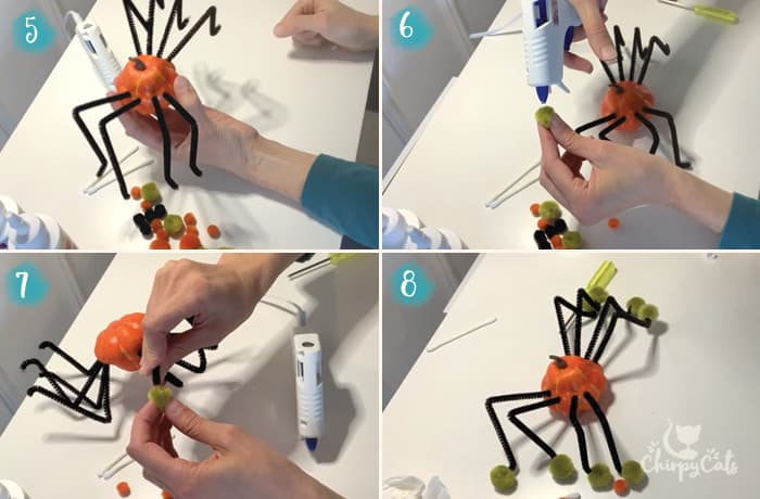 DIY step by step instructions to make pumpkin spider cat toys