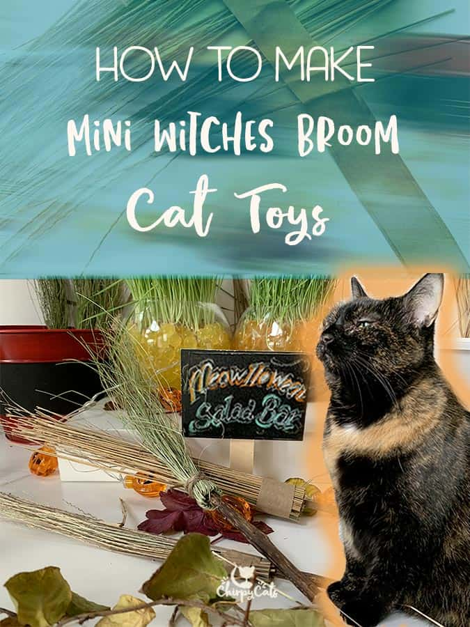 How to Make Mini Witch's Broom Cat Toys from Textures and Scents your Cat will Love