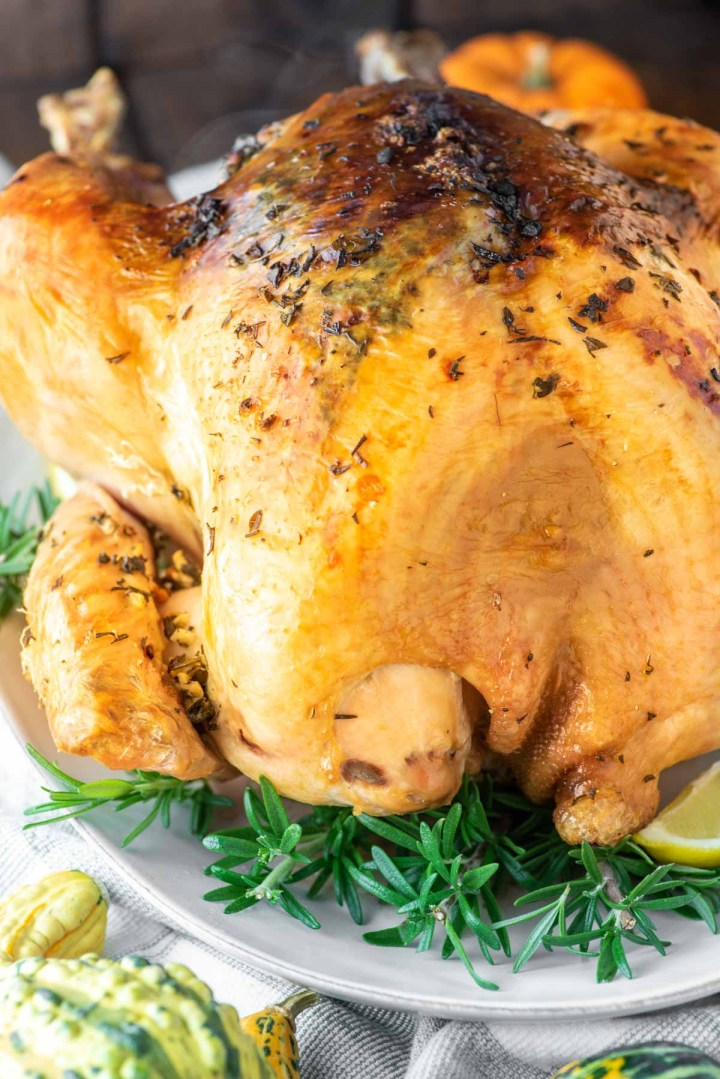 herb roasted turkey on white plate