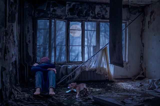 廃墟の中でうずくまっている若者とそれを心配そうに見ている犬