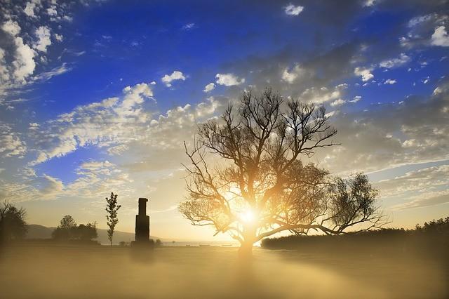 地平線から見える朝日