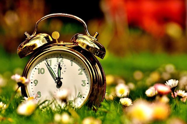 芝生の上に置かれて太陽の光があたってきれいな時計