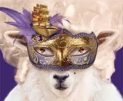 candide sheep