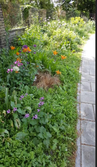 Stile Hall gardens guerilla gardening patch