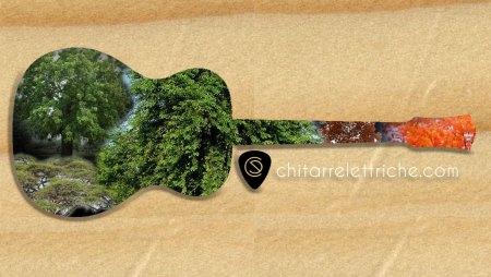Legni per chitarra elettrica: facciamo chiarezza