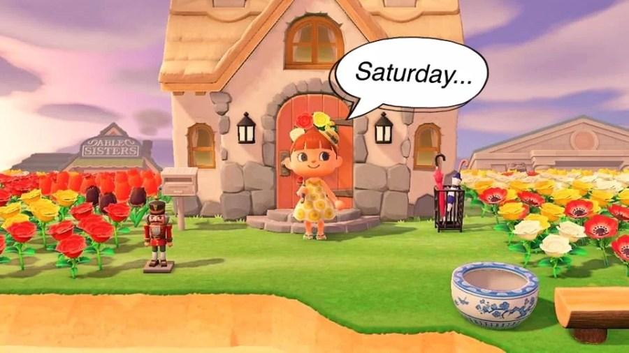 Animal Crossing Ding 2606 1
